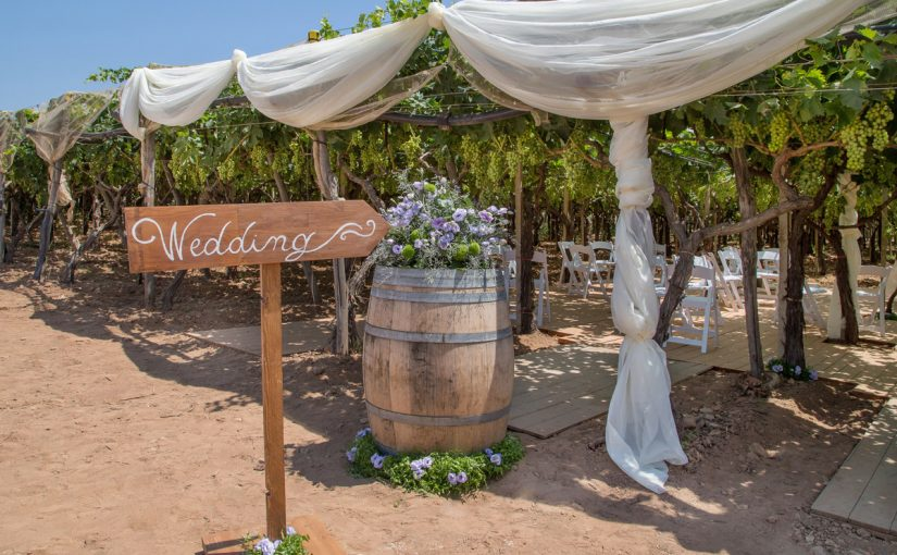 Matrimoni in Sardegna - Matrimonio in vigneto