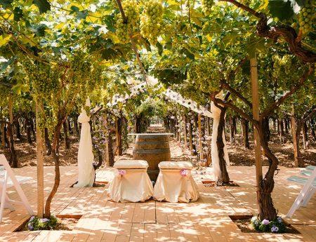 Matrimonio sotto un vigneto in Sardegna